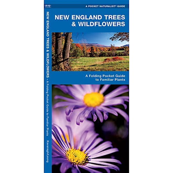 Waterford Press A Pocket Naturalist Guide - New England Trees & Wildflowers