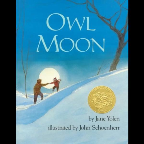 Penguin Owl Moon