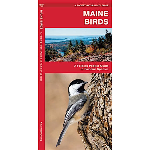 Waterford Press A Pocket Naturalist Guide - Maine Birds