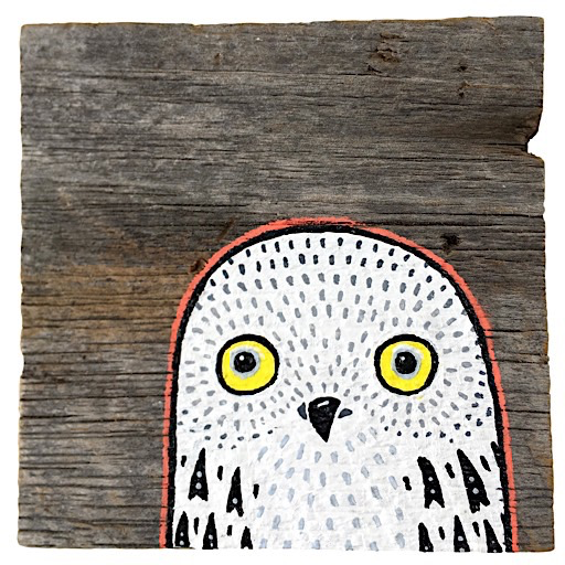 Mermaid Meadow Mermaid Meadow Barn Board Owl - 4x4
