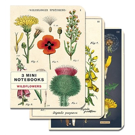 Cavallini Papers & Co., Inc. Cavallini Mini Notebooks - Wildflowers