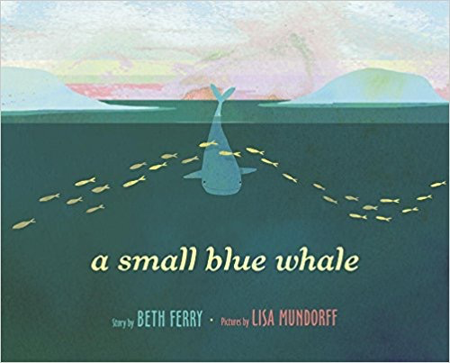 A Small Blue Whale