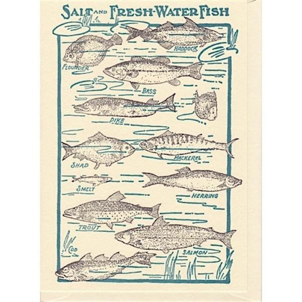 Saturn Press Saturn Press Fishes Card