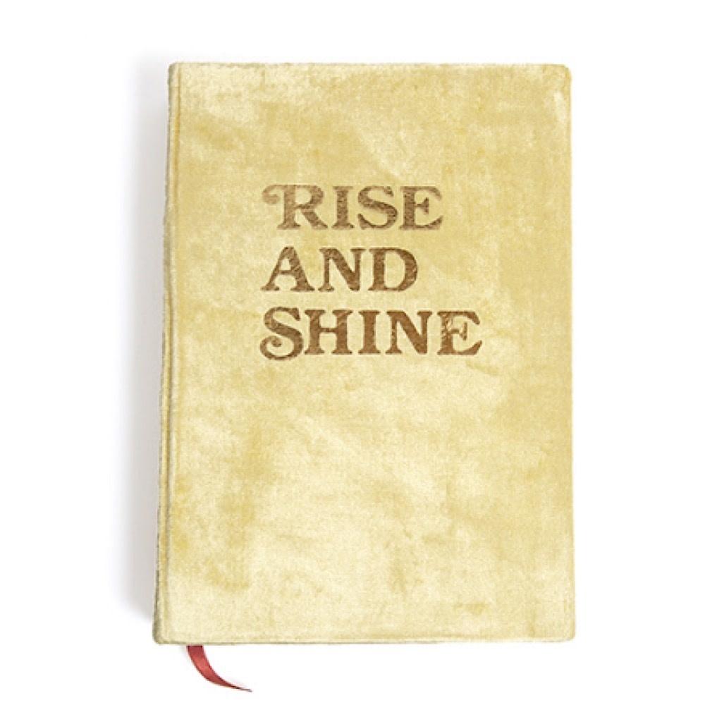 Printfresh Studio Rise And Shine Velvet Journal - Gold