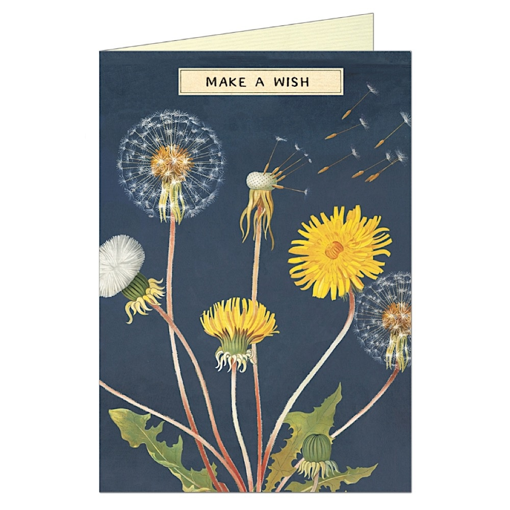 Cavallini Greeting Card - Make a Wish