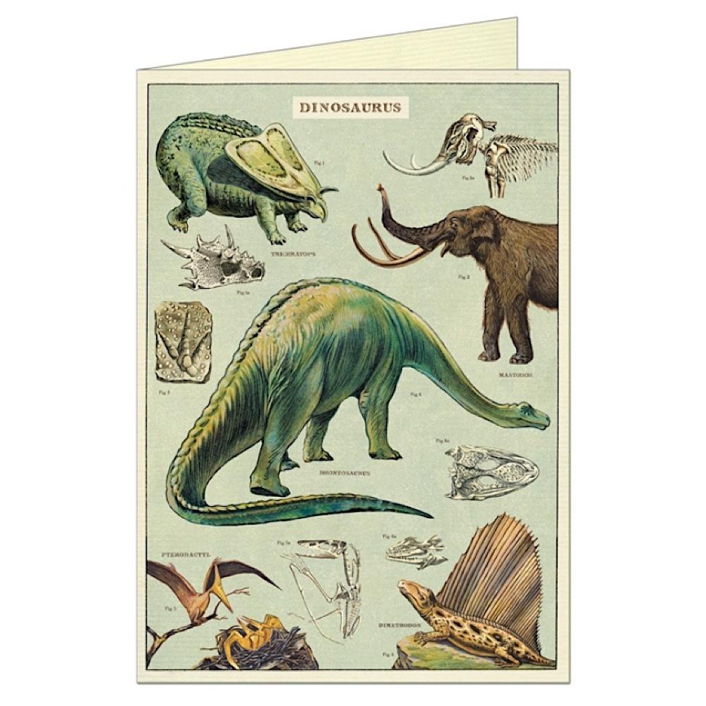 Cavallini Greeting Card - Dinosaurs