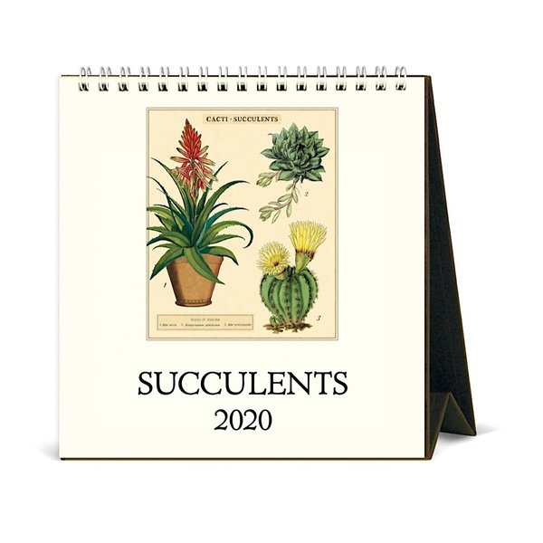 Cavallini Papers & Co., Inc. Cavallini Desk Calendar - Succulents 2020