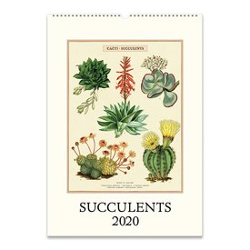 Cavallini Papers & Co., Inc. Cavallini Wall Calendar - Succulents 2020