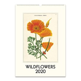 Cavallini Papers & Co., Inc. Cavallini Wall Calendar - Wildflowers 2020