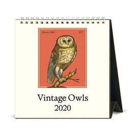 Cavallini Papers & Co., Inc. Cavallini Desk Calendar - Vintage Owls 2020