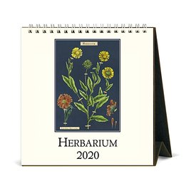 Cavallini Papers & Co., Inc. Cavallini Desk Calendar - Herbarium 2020