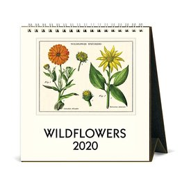 Cavallini Papers & Co., Inc. Cavallini Desk Calendar - Wildflowers 2020