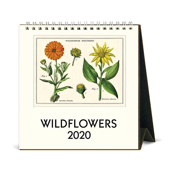 Cavallini Papers & Co., Inc. Cavallini Desk Calendar - Wildflowers 2020