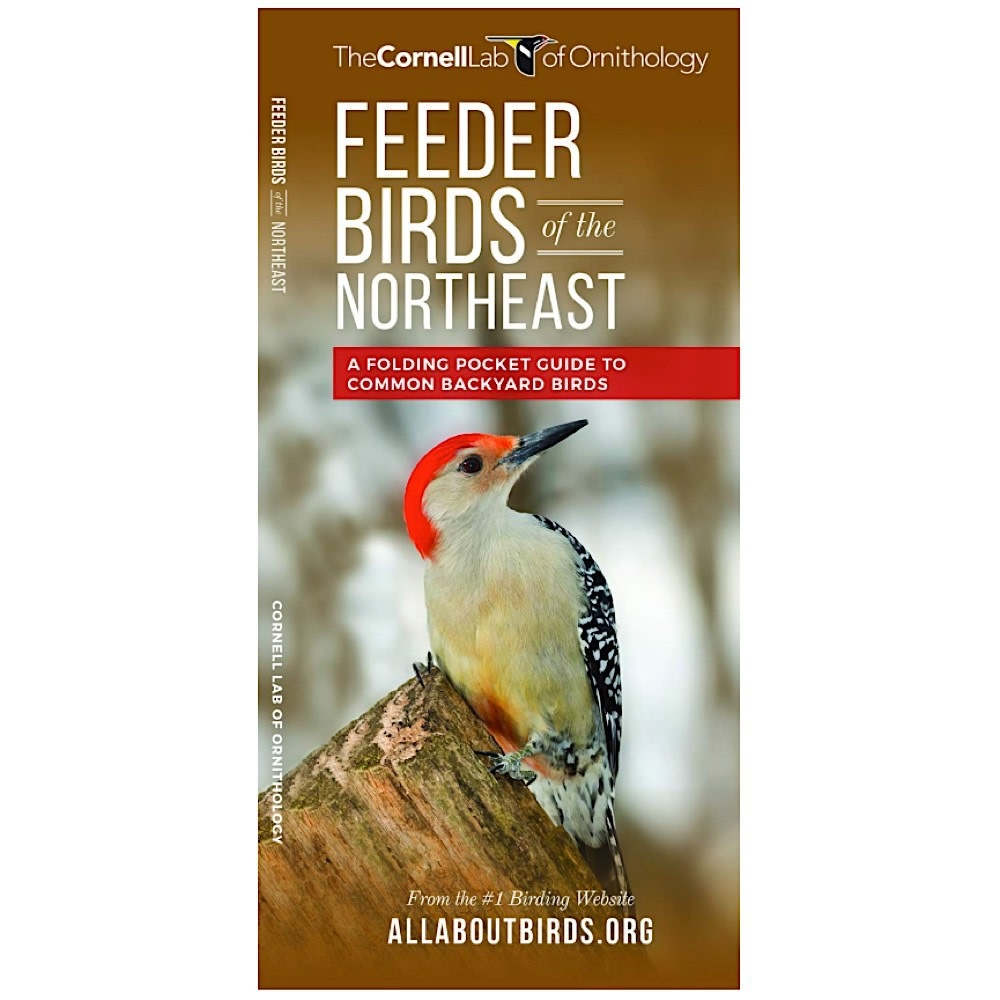 Waterford Press A Pocket Naturalist Guide - Feeder Birds of the Northeast