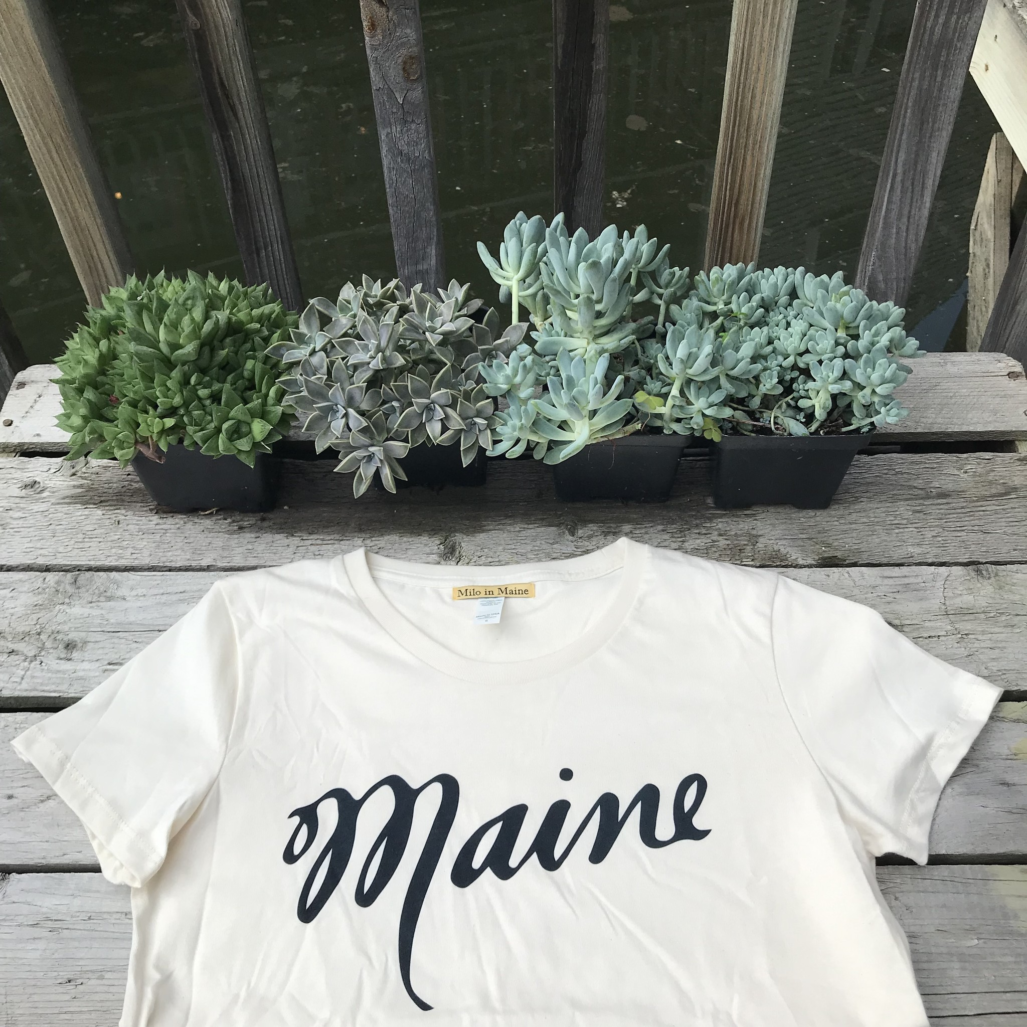 Milo In Maine Womens Tee Shirt - Maine Script Navy on White