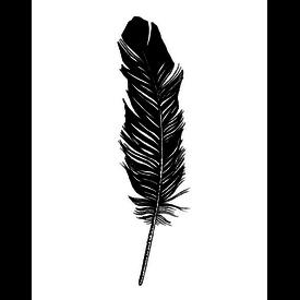 Tattly Tattly Tattoo 2-Pack - Feather