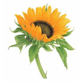 Tattly Tattly Tattoo 2-Pack - Sunflower
