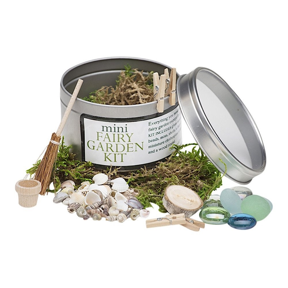 Liza Gardner Walsh Mini Fairy Garden Kit