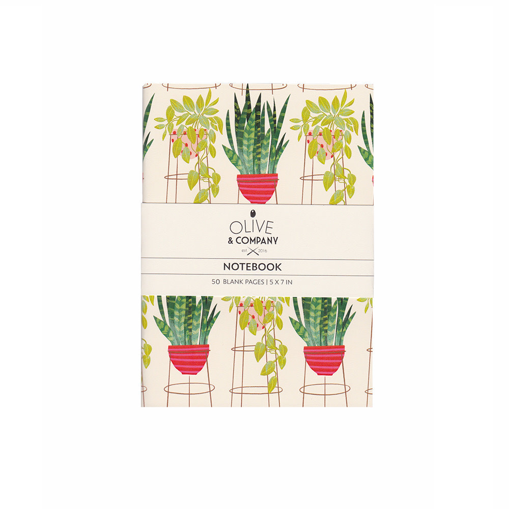 Olive & Company Journal - Tall Potted Plants
