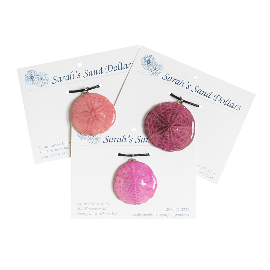 Sarah's Sandollars Sarah's Sand Dollar Necklace - Shades of Pink