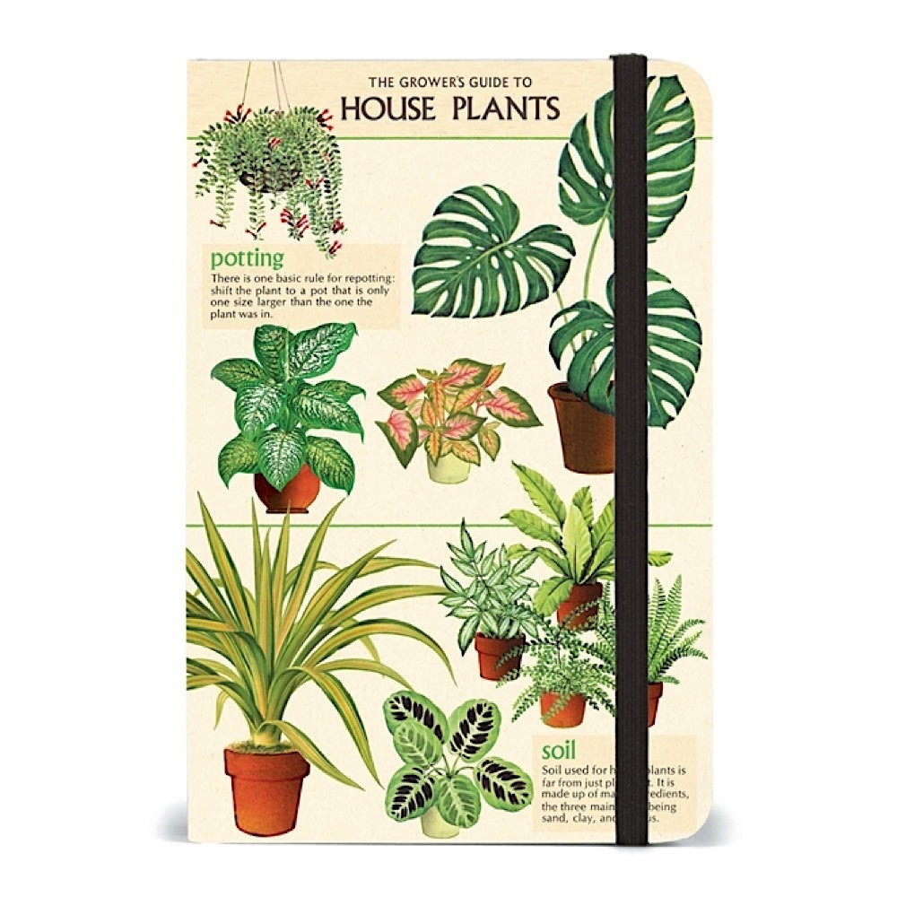 Cavallini Papers & Co., Inc. Cavallini Small Notebook - House Plants