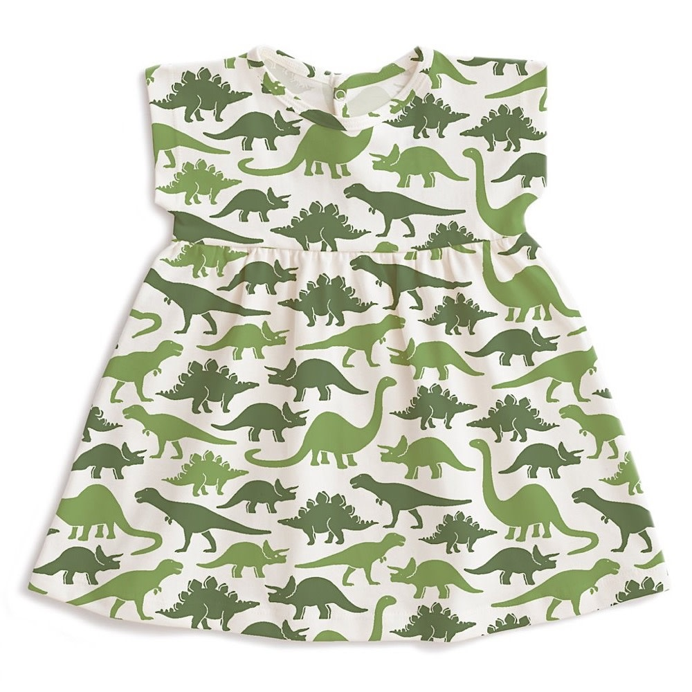 Winter Water Factory Merano Baby Dress - Dinosaurs Green