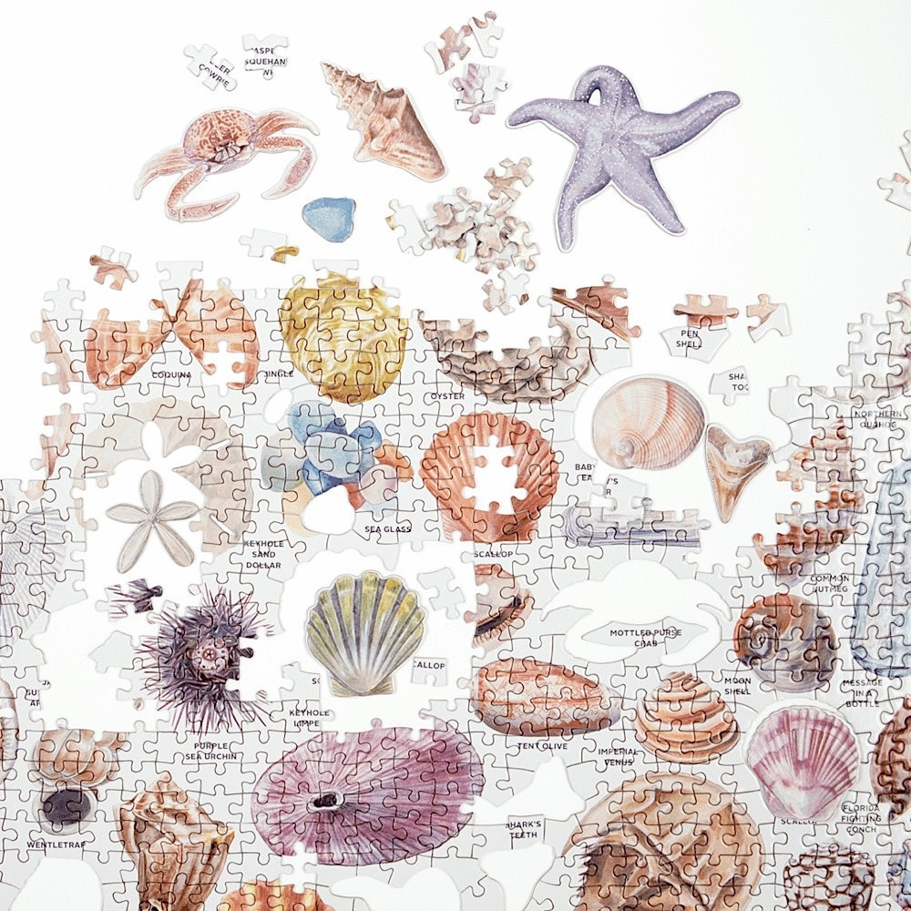 The Beachcombers Companion Jigsaw Puzzle - 1000 Piece