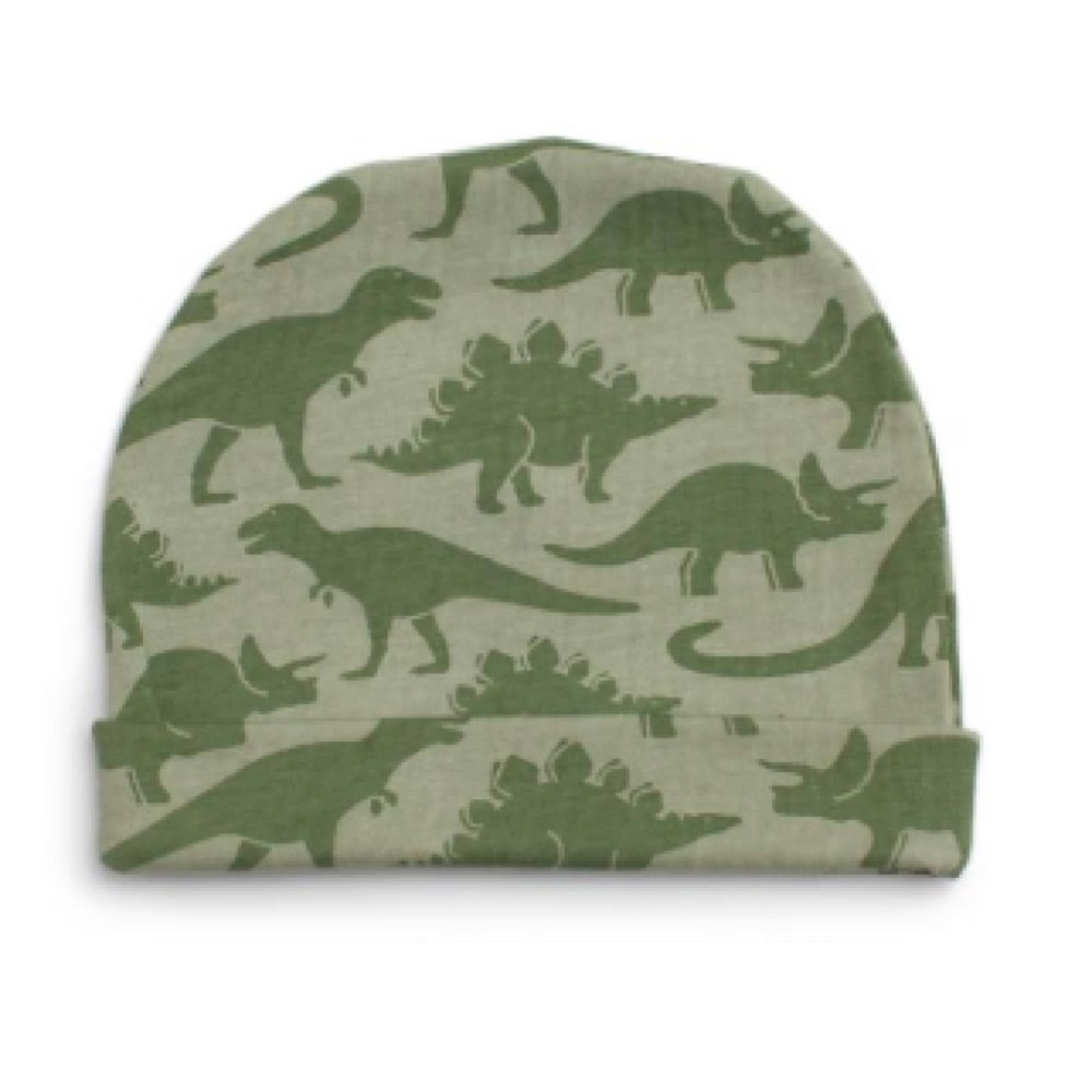 Winter Water Factory Winter Water Factory Baby Hat - Dinosaurs Sage