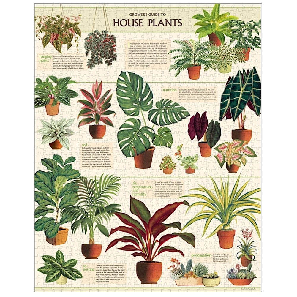 Cavallini Jigsaw Puzzle - House Plants - 1000 Pieces