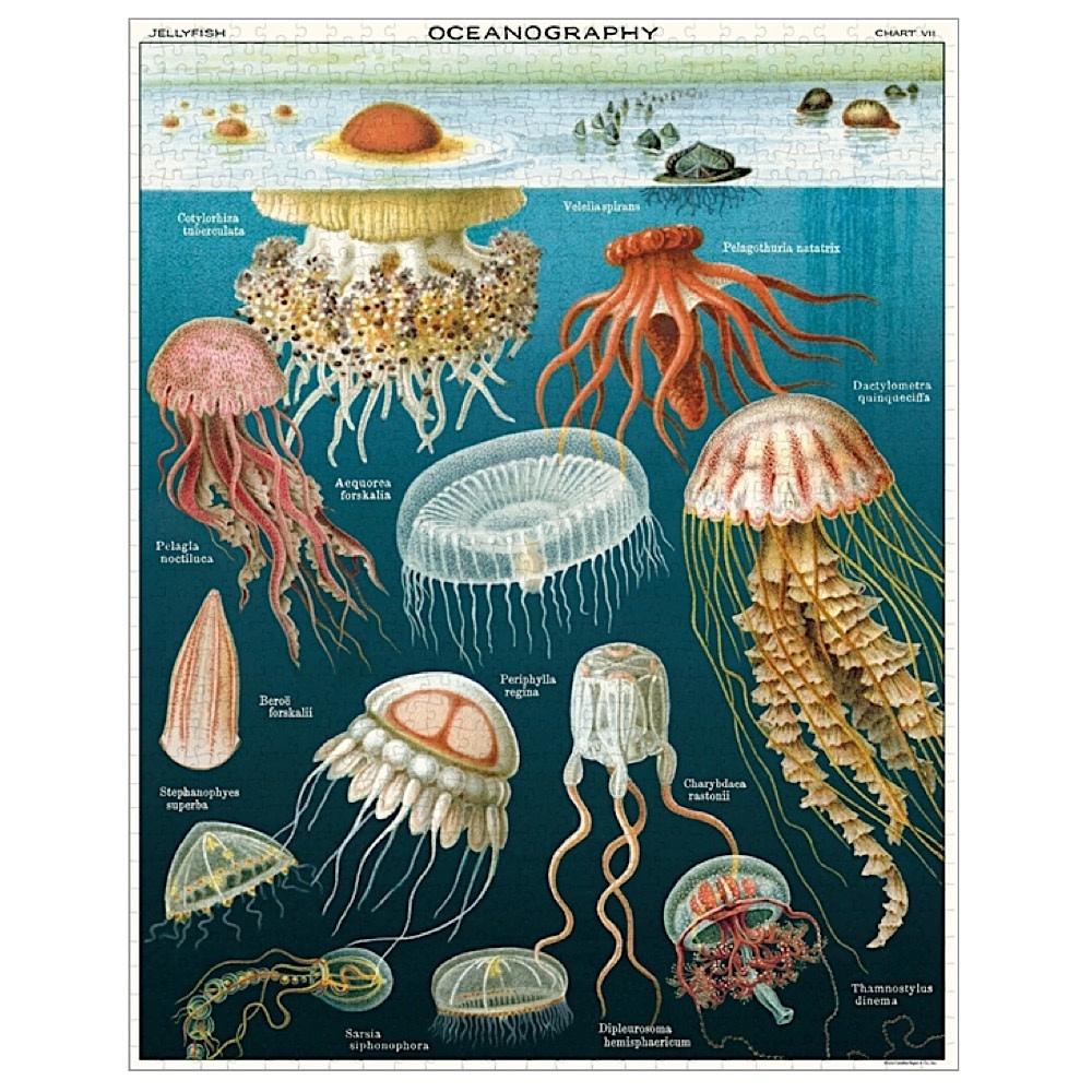 Cavallini Jigsaw Puzzle - Jellyfish - 1000 Pieces