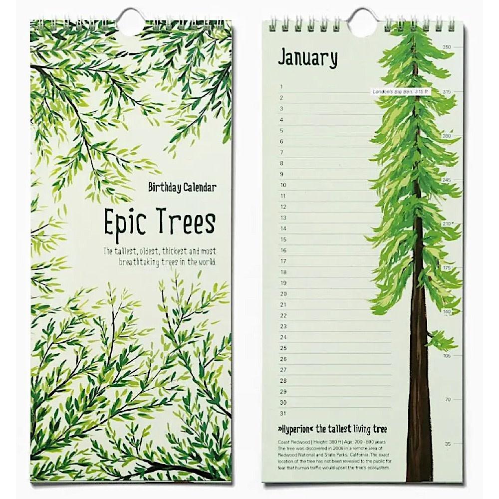 Made In Brockton Village Calendar - Epic Trees Birthday Calendar