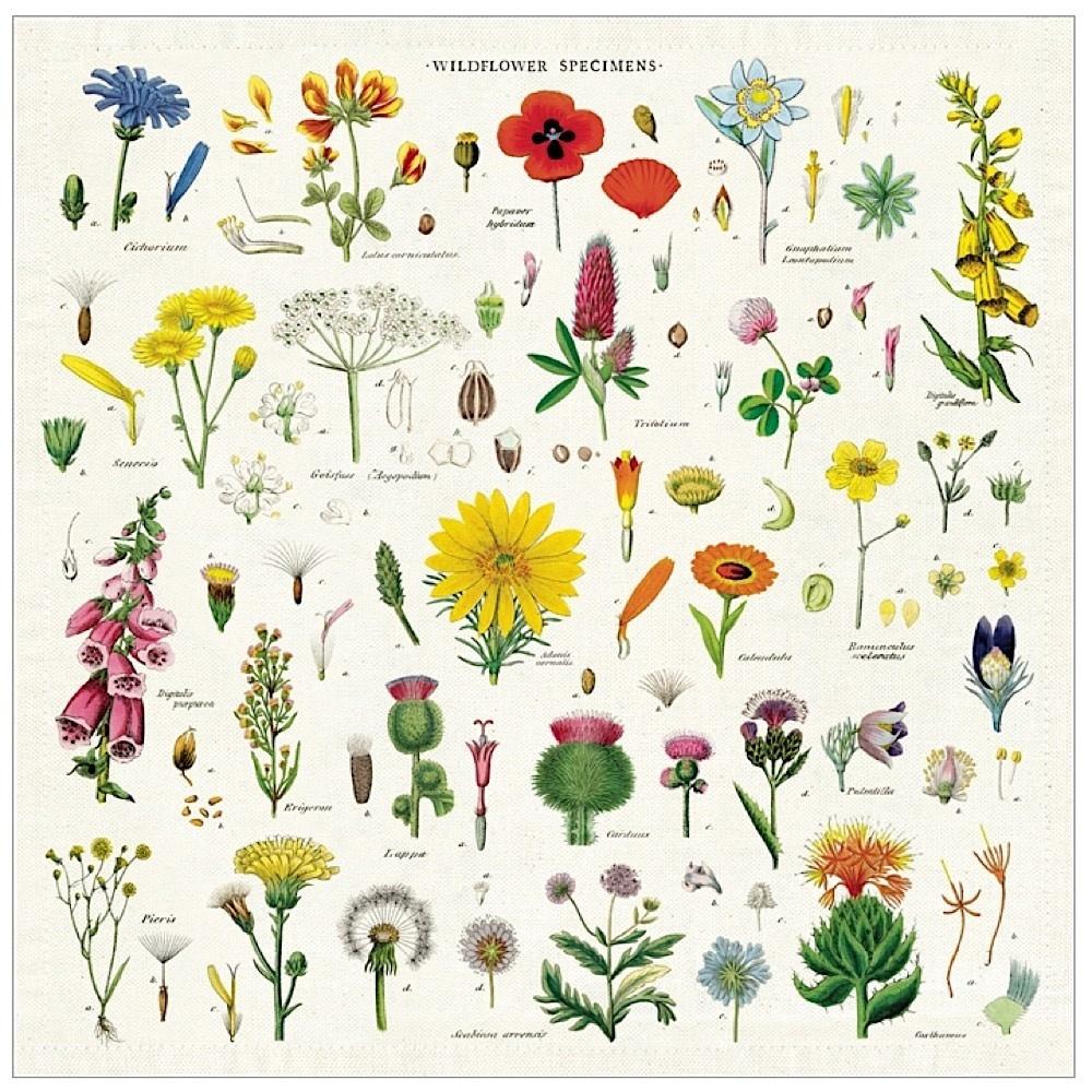Cavallini Vintage Cloth Napkins - Set of 2 - Wildflowers