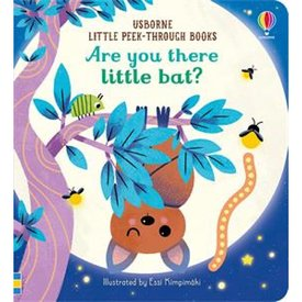Usborne Are you there Little Bat