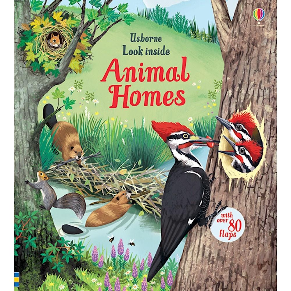Usborne Look Inside Animal Homes