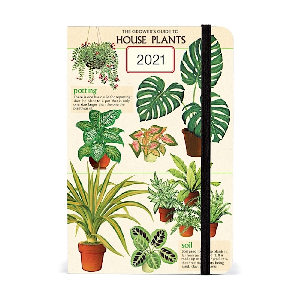 Cavallini Papers & Co., Inc. Cavallini Weekly Planner - House Plants 2021