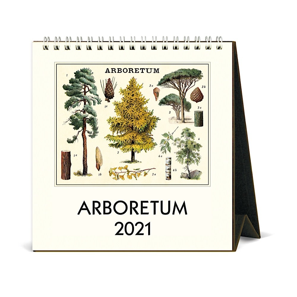 Cavallini Papers & Co., Inc. Cavallini Desk Calendar - Arboretum 2021
