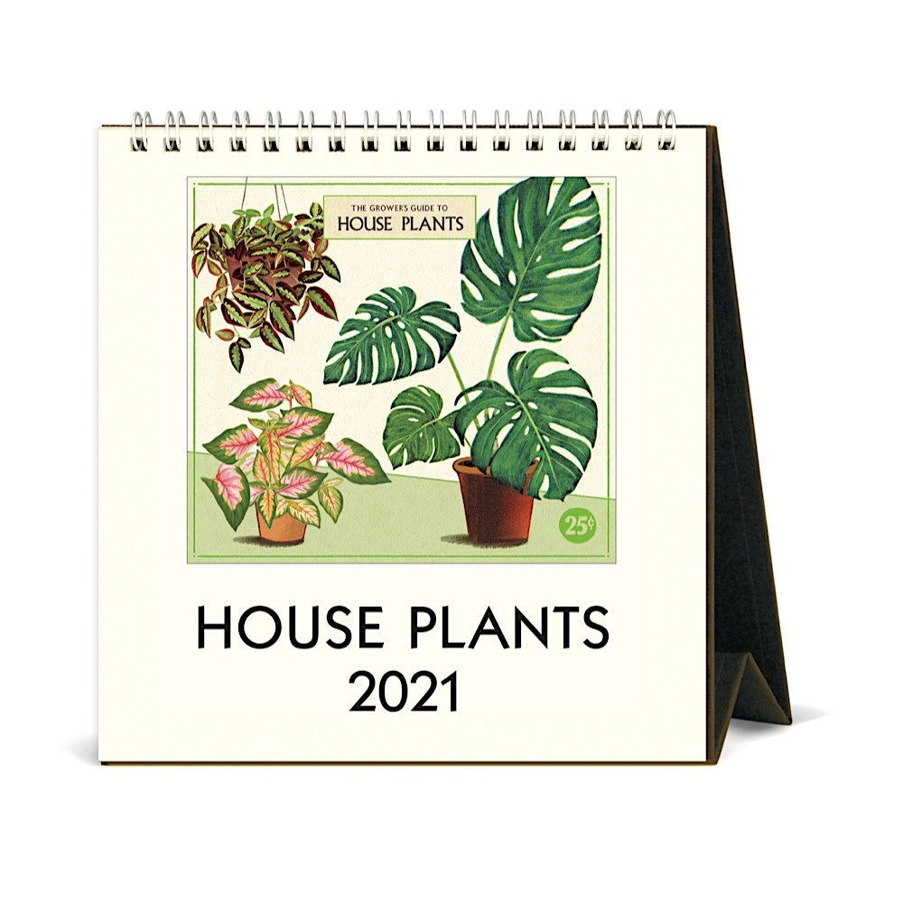 Cavallini Desk Calendar - House Plants 2021
