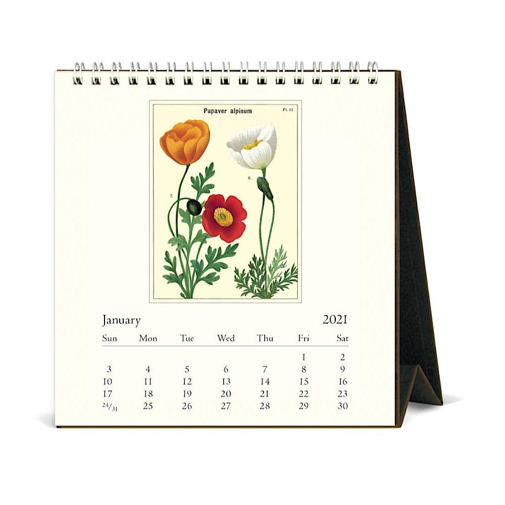 Cavallini Desk Calendar - Wildflowers 2021