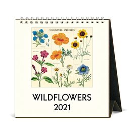 Cavallini Papers & Co., Inc. Cavallini Desk Calendar - Wildflowers 2021