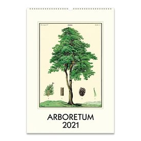 Cavallini Papers & Co., Inc. Cavallini Wall Calendar - Arboretum 2021