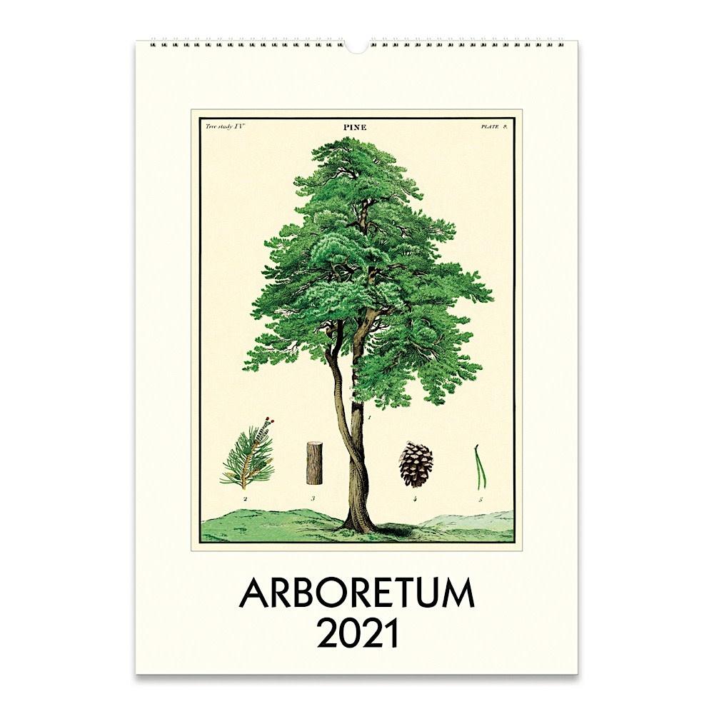 Cavallini Papers & Co., Inc. Cavallini Wall Calendar - Arboretum 2021