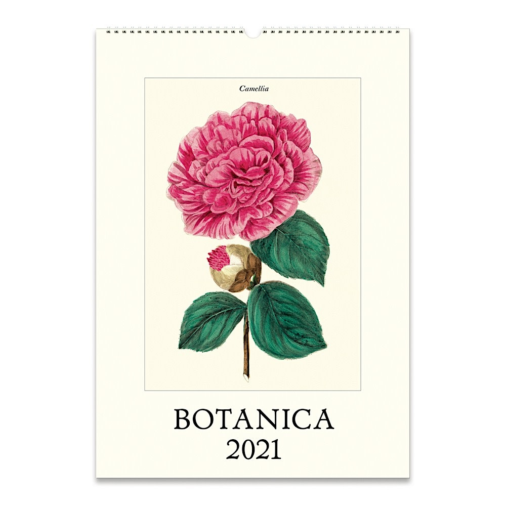 Cavallini Papers & Co., Inc. Cavallini Wall Calendar - Botanica 2021