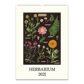 Cavallini Papers & Co., Inc. Cavallini Wall Calendar - Herbarium 2021