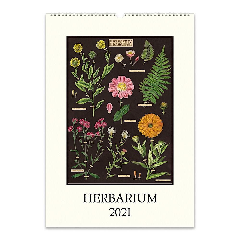 Cavallini Papers & Co., Inc. Cavallini Wall Calendar - Herbarium 2021