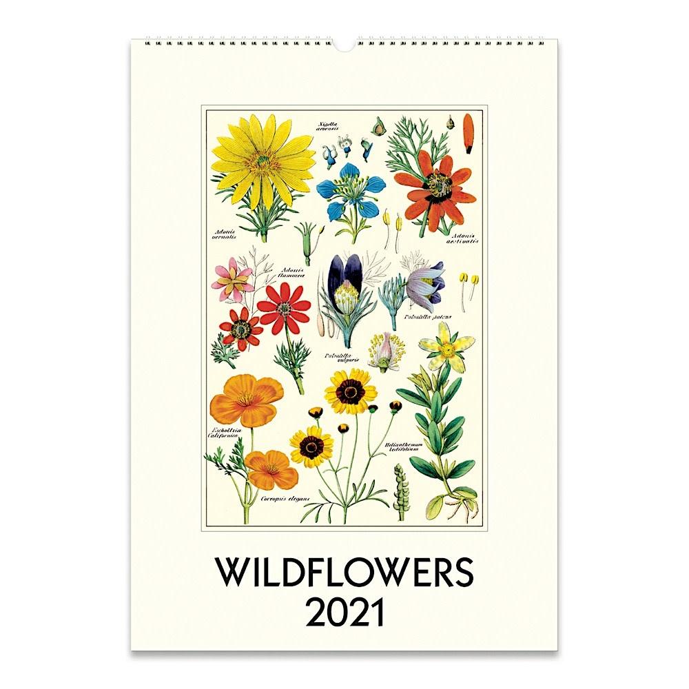 Cavallini Wall Calendar - Wildflowers 2021