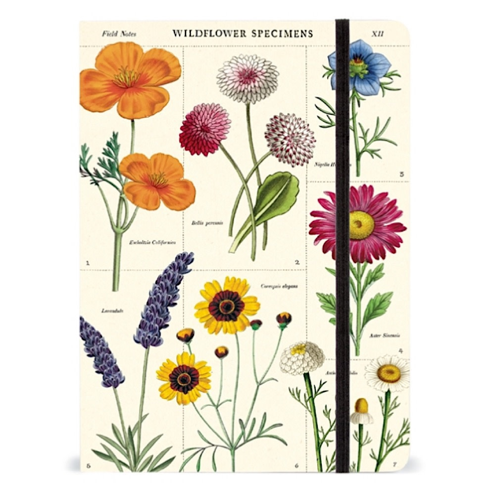 Cavallini Large Notebook - Wildflowers