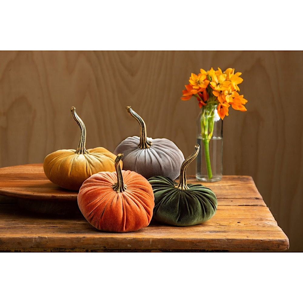 Your Heart's Content Small Velvet Pumpkin - Harvest