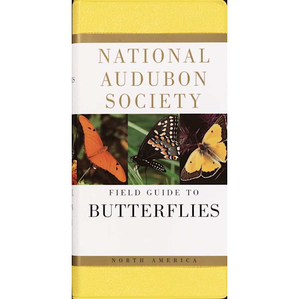 National Audubon Society's Field Guide To Butterflies