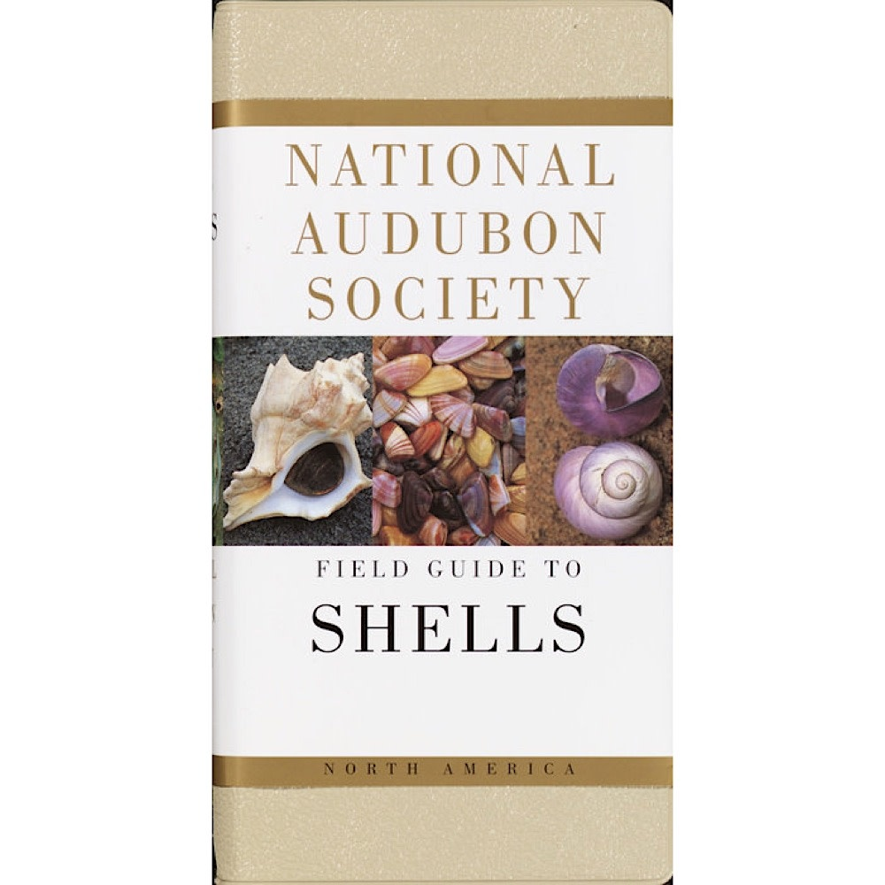 National Audubon Society's Field Guide To Shells