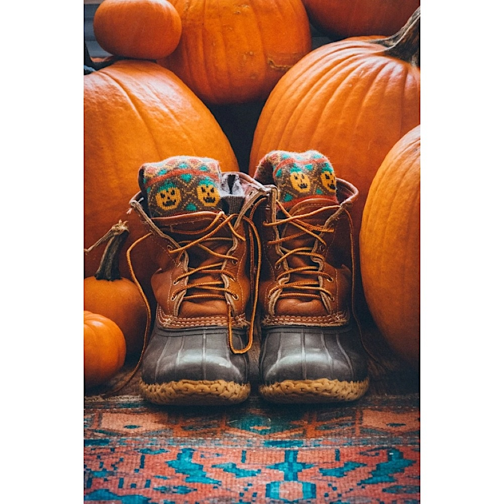 Kiel James Patrick Socks - Sock-O-Lanterns